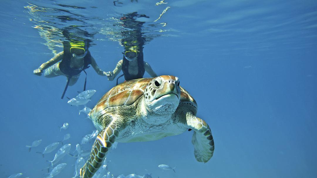 Corfu snorkelen